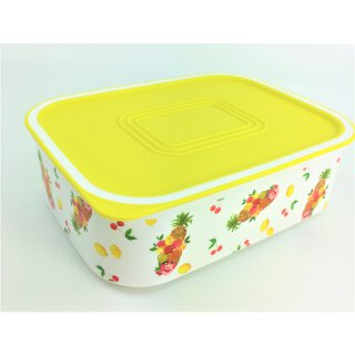 Tupperware Dose Quadro 500 ml Sommer Obst tolles Motiv Jahreszeiten NEU